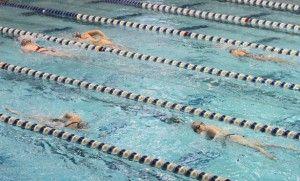 Swim teams achieve academic honors