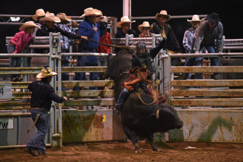 Gallery: The rush of the rodeo