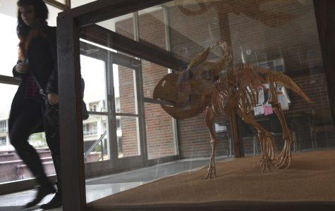 Help name SIU's dinosaur
