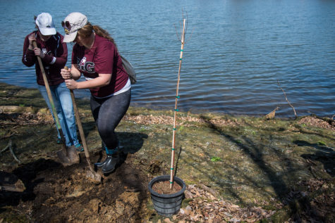 University to celebrate Earth Month through sustainability projects