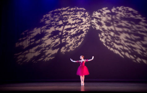 Emotions evoked by Alzheimer's expressed through spoken-word ballet