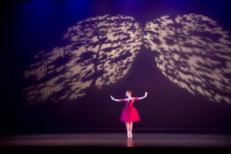 Emotions evoked by Alzheimer's expressed through spoken-word ballet