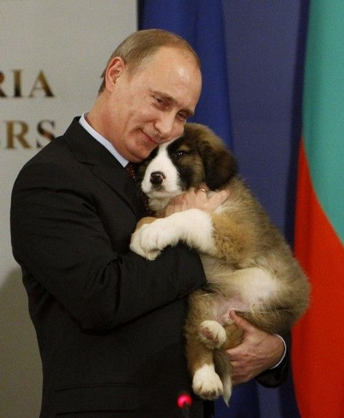 Seth saves the world: I'm watching you Putin