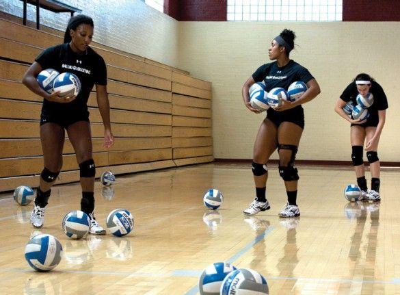 hannah kaminsky volleyball