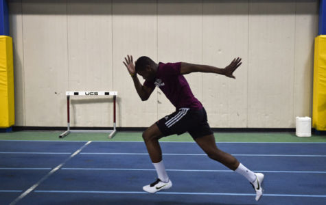 Barbados born Saluki sprinting back to action