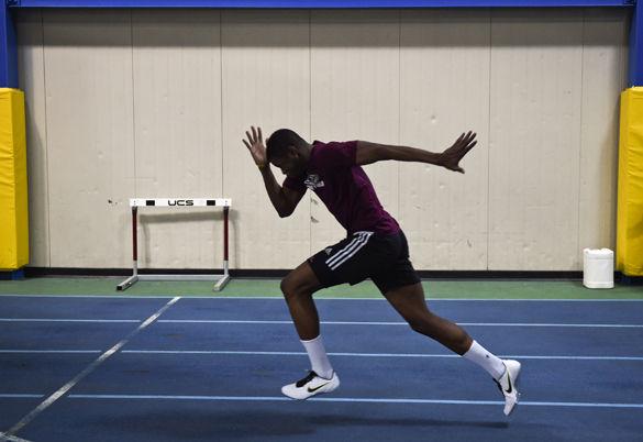 Barbados born Saluki sprinting back to action