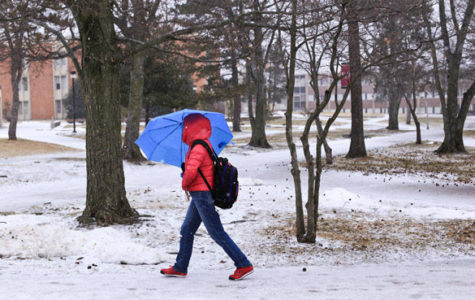 Snow and ice hit southern Illinois