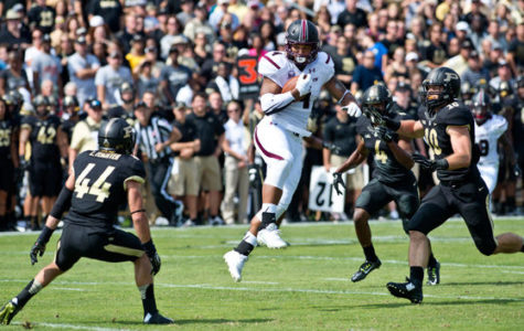 Former SIU All-American released from Minnesota Vikings