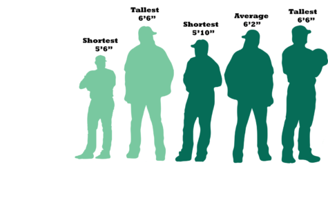 Pitchers vary in size more than other positions