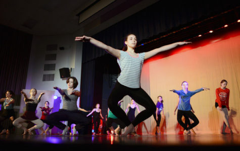 SIDC hosts annual fall concert