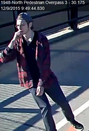 SIU police seeking information on suspect in graffiti incidents