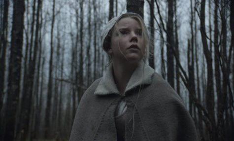 'The Witch' captures audience members