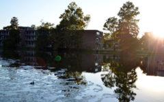 Campus Lake. (DailyEgyptian.com file photo)