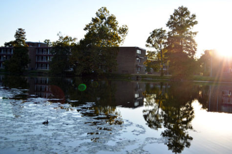 Campus Lake. (DailyEgyptian.com file photo)