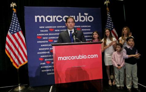 Fallen star: Marco Rubio suspends campaign after Trump trouncing