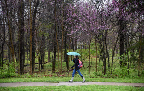 Thompson Woods survey stirs further debate among campus community