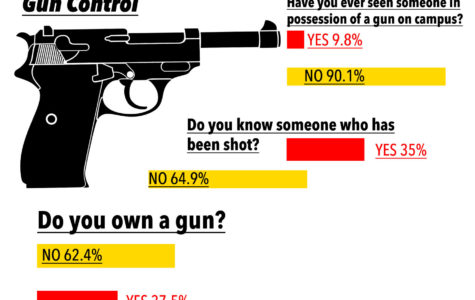 DE poll: Students not on target with idea of concealed carry on campus
