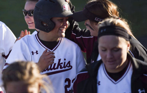 SIU completes Illinois State sweep behind Jones' eighth shutout