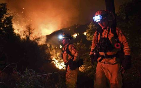 Firefighters remove brush as they battle the Sand fire along Placerita Canyon Road in the San Gabriel Mountains on July 24 near Santa Clarita, Calif. (Wally Skalij/Los Angeles Times/TNS)