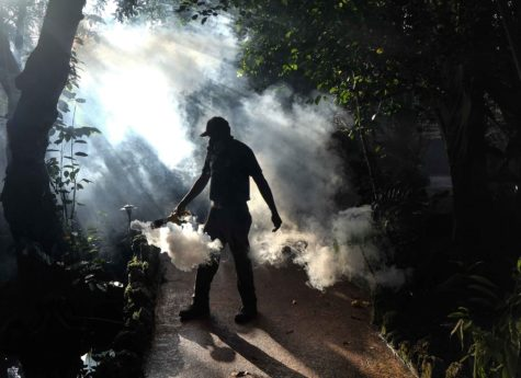 Fran Middlebrooks, a grounds keeper at Pinecrest Gardens, uses a blower to spray pesticide to kill mosquitos Aug. 4, 2016 in Miami, as Miami Dade county fights to control the Zika virus outbreak. (Gaston De Cardenas/Miami Herald/TNS)