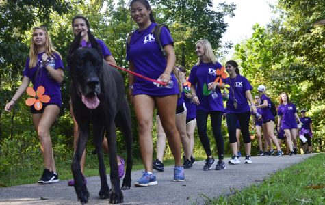 Photo of the day: Walkers stride to end Alzheimer's