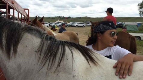 Tech Big Crow, 18, cares for Blue, one of the horses he and others have brought to the protest site, at the confluence of the Cannonball and Missouri rivers in North Dakota. (William Yardley/Los Angeles Times/TNS)