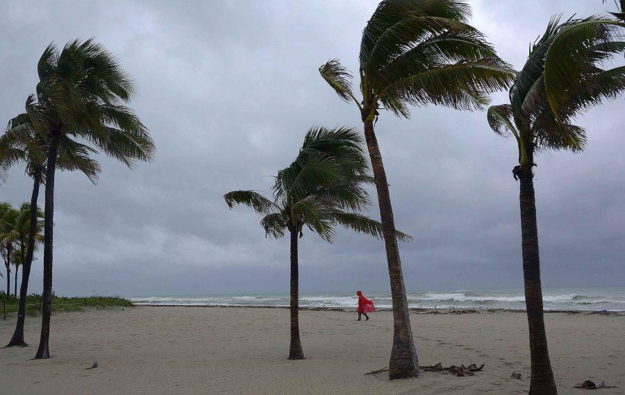 Jose Paseta, of Hallandale, Fla., walks along Hollywood Beach amid the lead elements of Hurricane Matthew on Thursday, Oct. 6, 2016. (Michael Laughlin/Sun Sentinel/TNS)