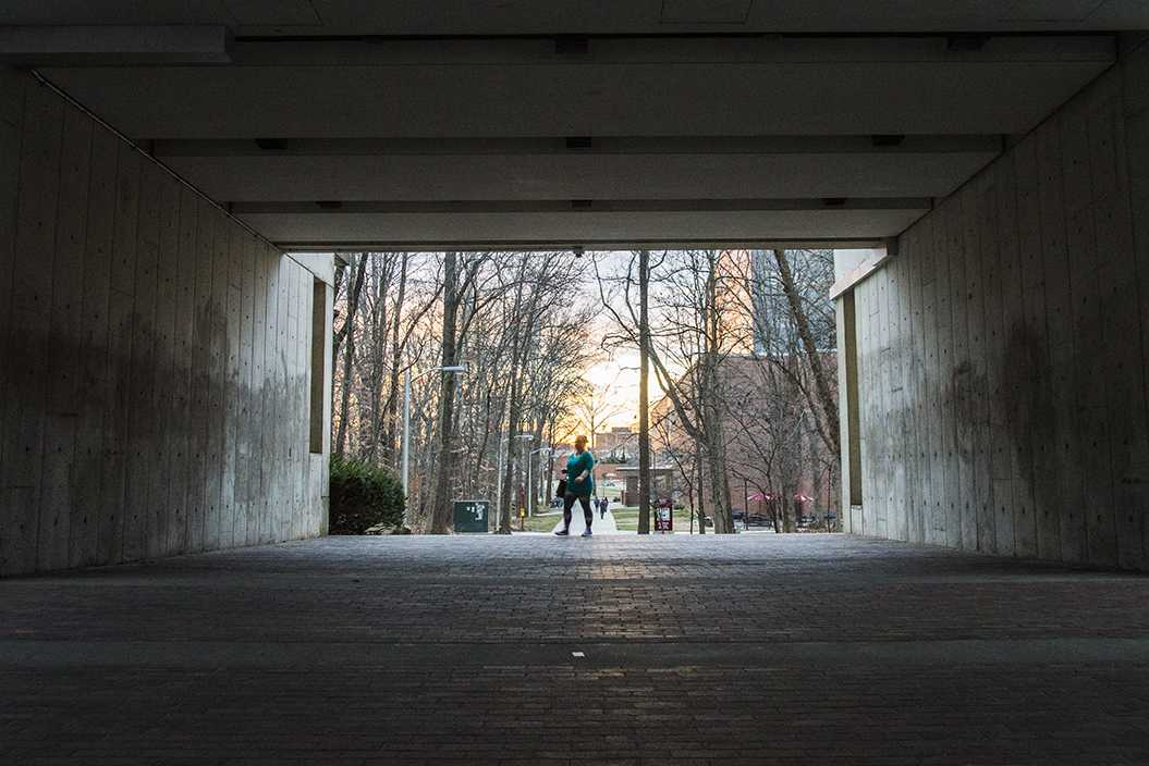 Jessica Leonard, a graduate student in history from Carbondale, walks through the Faner Breezeway on Wednesday, Jan. 25, 2017, in Carbondale. A proposal by the Hispanic Student Council would allow a mural to be painted on the breezeway walls. (Branda Mitchell | @branda_mitchell)