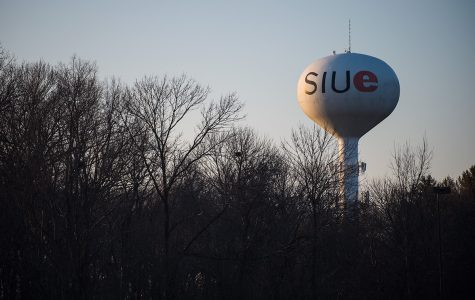 SIUE Faculty Senate executive committee: SIUC needs a 'new institutional identity'