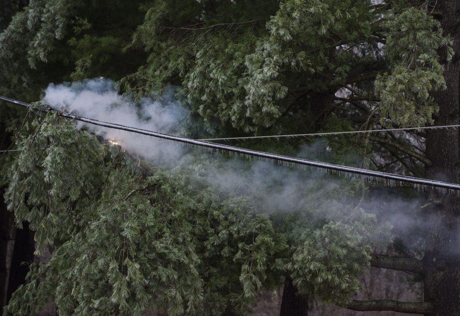 The Carbondale Fire Department monitors a fallen tree limb that is smoldering on a stretch of power lines at West Main Street, just north of West Striegel Road, in Carbondale. (Ryan Michalesko | @photosbylesko)