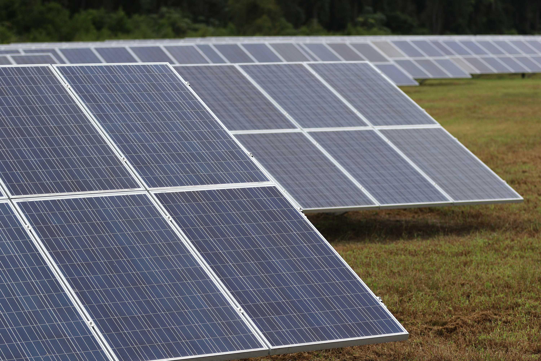 Solar panels near Oglethorpe, Ga. (Bob Andres/Atlanta Journal-Constitution/TNS)