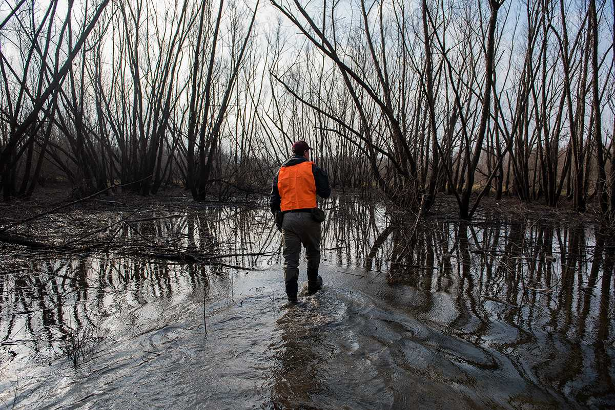 John O'Connell, a Ph.D. candidate in zoology from Miami, traverses wetlands Sunday, Feb. 12, 2017, off Illinois Route 3 near Gale. The Cooperative Wildlife Research Laboratory, through which O'Connell conducts his wetland research, could be at risk of losing $507,388 in funding if the university doesn't receive state appropriations by July 1.