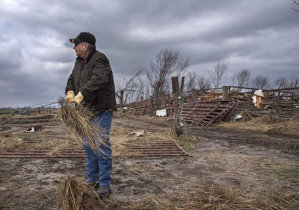 Joker Young, of Carbondale, surveys Oren Coffer's horse and cattle farm as he detangles strands of hay from a wire fence Wednesday, March 1, 2017, while helping Coffer rebuild his property after Tuesday's tornado off Elkville Road in Vergennes. The tornado levelled Coffer's 101-year-old barn and numerous other structures on his property.