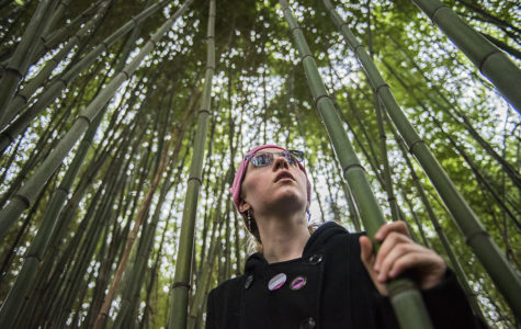 Emmalie Hall-Skank, a senior from Streamwood studying interior design, gazes up from inside a bamboo forest Sunday, March 5, 2017, during an afternoon hike with members of the Southern Illinois Pagan Alliance at the Marberry Arboretum off Pleasant Hill Road in Carbondale. The group hike was organized by Tara Nelson, founder of SIPA and a 2002 SIU graduate.