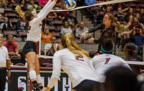SIU swept in final tournament game by host WMU