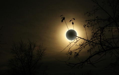 Idaho Falls braces for the world as eclipse-mania sweeps the small town. (Dreamstime/TNS)