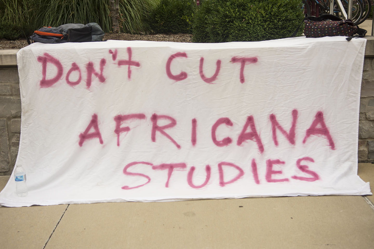 A+banner+stating+%22don%27t+cut+Africana+Studies%22+sits+outside+the+Student+Center+Tuesday%2C+Aug.+22%2C+2017.+Students+and+alumni+gathered+outside+the+Student+Center+to+protest+the+removal+of+the+Africana+Studies+program+from+SIU.+Athena+Chrysanthou+%7C+%40Chrysant1Athena%29
