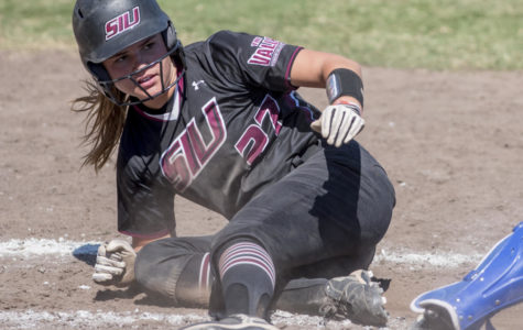 Saluki softball fails to complete sweep of Bradley