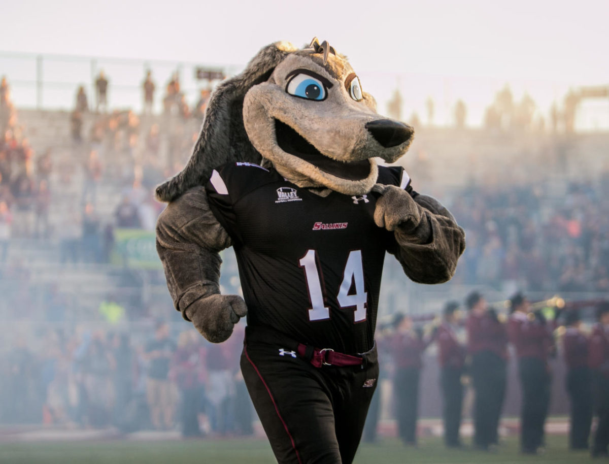 Grey Dawg runs on the field Saturday, Sept. 30, 2017, before the Salukis' matchup against the University of Northern Iowa Panthers at Saluki Stadium. (Brian Muñoz | @BrianMMunoz)