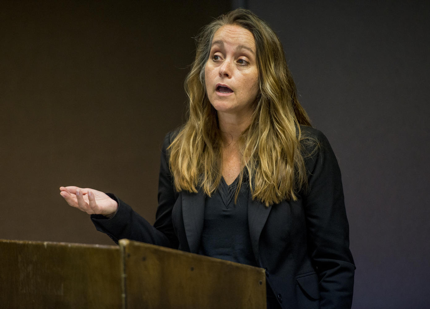 """Stacy McDermott makes her case in the Paul Simon institute director search Monday, Oct. 2, 2017, in the Illinois room of the Student Center. """"I want to share with others the power of positive inspiration,"""" McDermott said. (Auston Mahan 