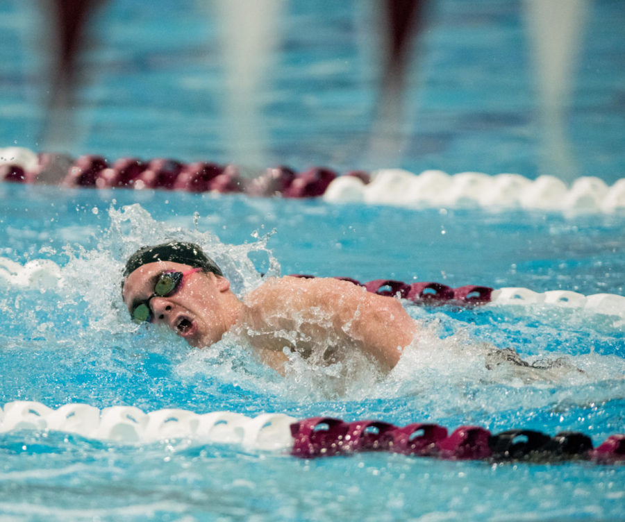 Freshman+Michael+Stern+competes+Saturday%2C+Nov.+4%2C+2017%2C+in+the+Dr.+Edward+Shea+Natatorium.+%28Brian+Mu%C3%B1oz+%7C+%40BrianMMunoz%29