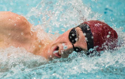 Saluki swimmers set new records in Saluki Invite