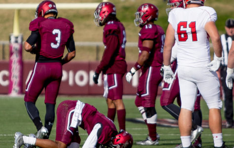 Gallery: Saluki football slips up against Youngstown State Penguins