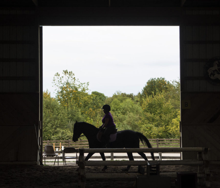 Melany Mulligan of Carbondale rides her horse Rosebud, Friday, Sept. 1, 2017, at Odonoghue Stables in Carbondale. Mulligan has had her horse two and a half years but has been riding since she was eight. Mulligan said the thing she enjoys the most about riding is the relationship she has with her horse. ÒWe have a very interesting relationship,Ó Mulligan said. ÒWe come here every day.Ó