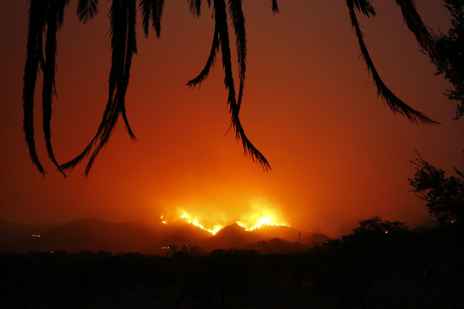 Fire burns back down the hill behind East Valley Road by Ladera Lane near Toro Canyon at dusk on Tuesday, Dec. 12, 2017 in Montecito, Calif. The Thomas fire continues to burn in the upper reaches of Ventura County and in the mountains behind Carpinteria and Montecito in Santa Barbara County with fairly calm winds. (Al Seib/Los Angeles Times/TNS)
