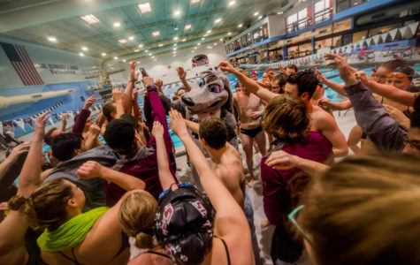 Salukis dominate Sycamores in meet