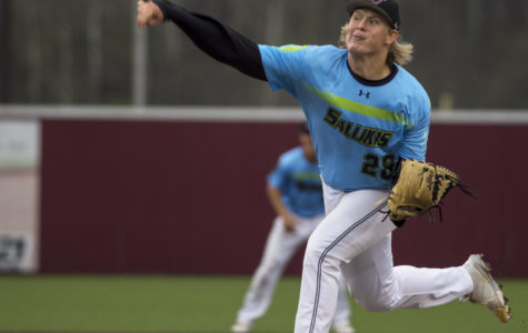 Saluki baseball drops season series to Illinois
