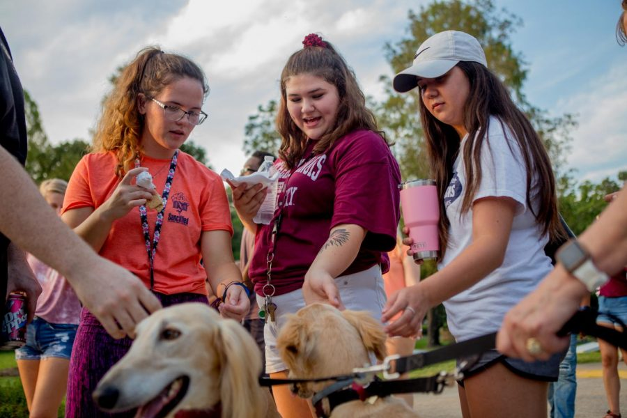 Alaina Pape (center), a freshman studying cinema and photography from Roselle, pets Pharaoh, one of the SIU mascots, on Thursday, Aug. 16, 2018, during Light Up the Lake at Campus Lake.  (Brian Munoz | @BrianMMunoz)