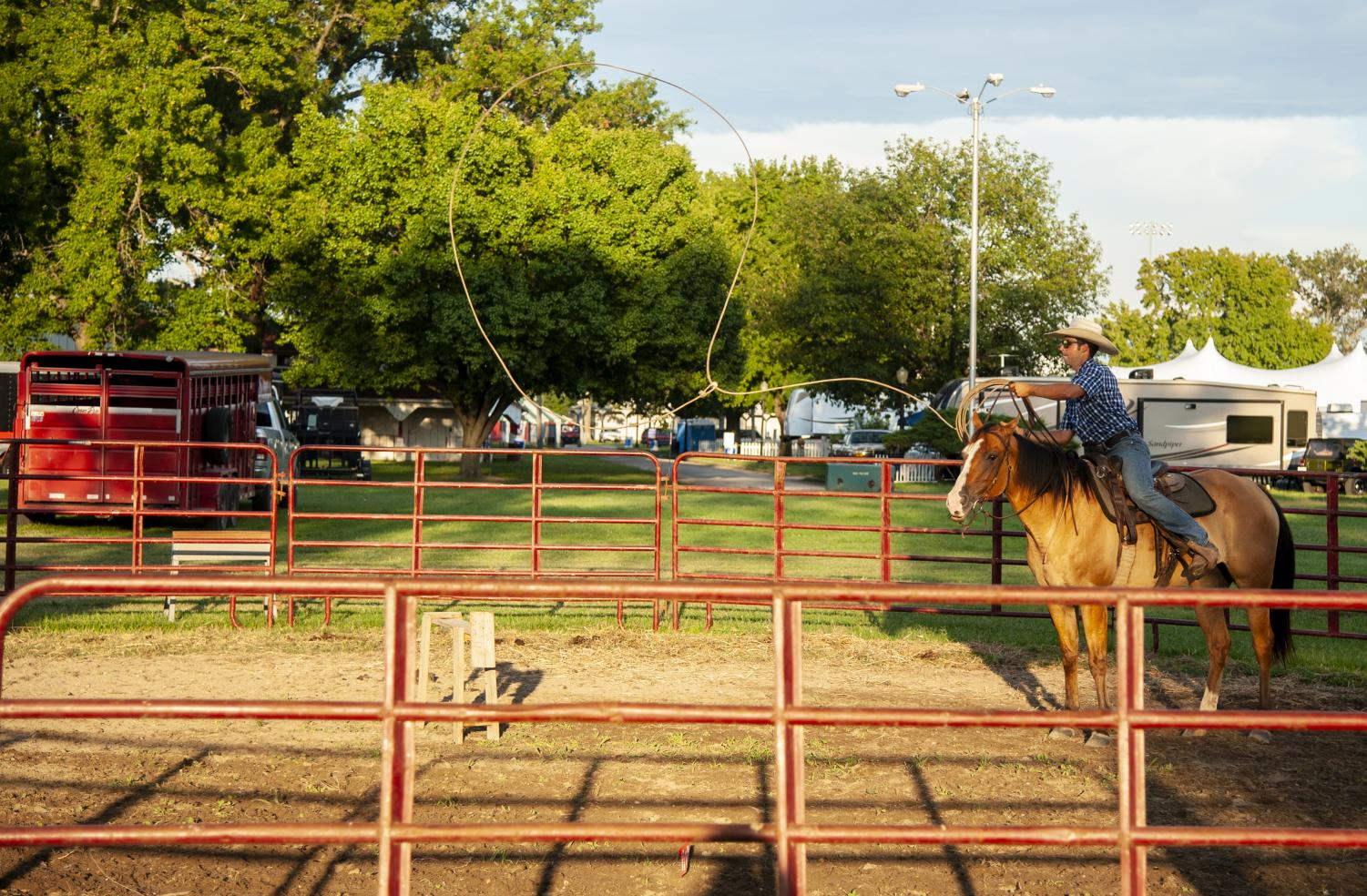 Jacob+Schwarm%2C+28%2C+of+Marion+throws+his+lasso+around+a+practice+cattle%2C+Friday%2C+Aug.+31%2C+2018%2C+at+the+Du+Quoin+State+Fair.+%28Mary+Barnhart+%7C+%40MaryBarnhart%29