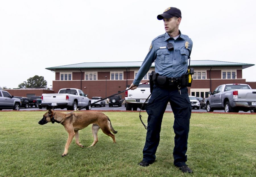 "Seth Moorman, a carbondale K-9 patrol officer, 27, of Carterville stands on the grass field behind the Carbondale police station with his canine, Pasja, as he talks about the training he took to be a K-9 officer, Friday, Oct. 12, 2018. Moorman said that he spent his first six weeks with Pasja training in Indianapolis, coming back to Carbondale in August 2017. ""If an officer does a traffic stop and wants to walk the dog around the car and the dog can sniff for illegal narcotics, she can do that. If there is also any type of crime like a robbery or a burglary or something like that that's just happened recently, depending on the information we have, we might be able to deploy her and track a suspect,"" Moorman said. ""We can also use her to clear buildings."" (Allie Tiller 